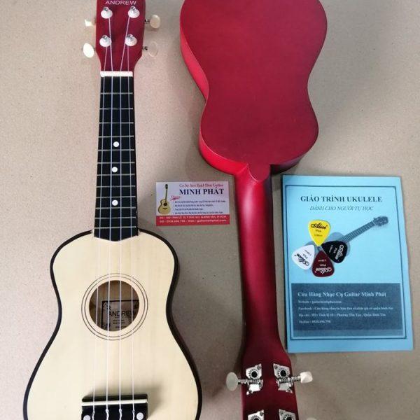 dan-ukulele-mau-go-gia-re-duoi-400k-tai-quan-binh-tan-tphcm