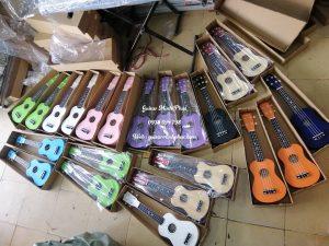 Mua đàn ukulele giá rẻ tại quận Bình Tân, TpHCM - Nhạc Cụ Minh Phát