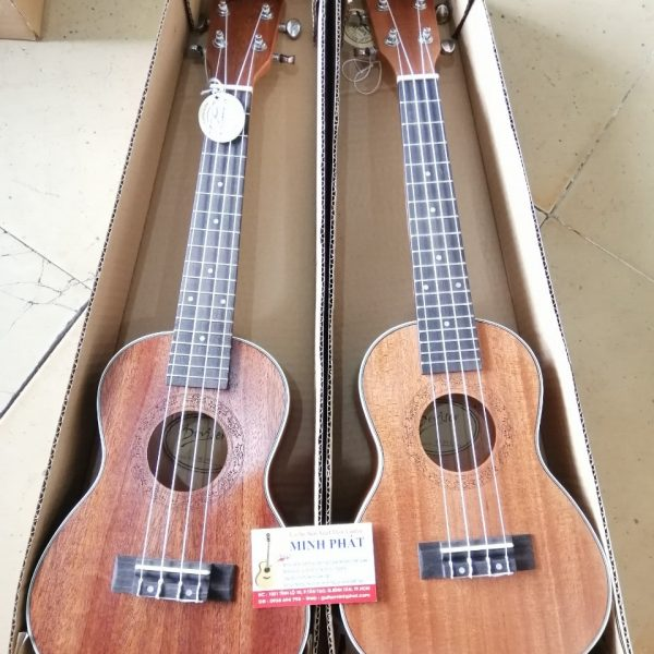 shop-dan-ukulele-concert-desiver-tai-quan-binh-tan-tphcm