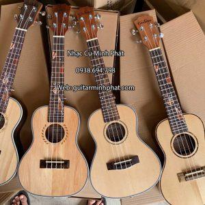 dan-ukulele-concert-cordoba-3